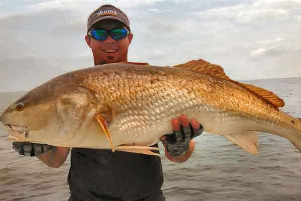 redfish-fishing-charters-georgia-Medium