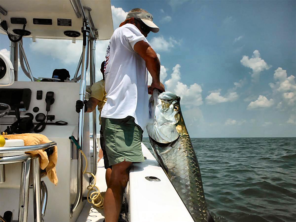 tarpon-fishing-charters-coastal-georgia