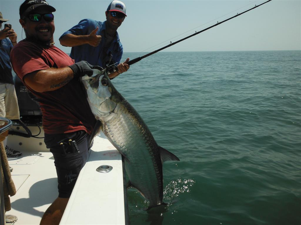 Tarpon fishing charters form st simons island and jekyll for St simons island fishing report