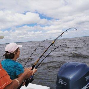 Fishing Charter Customers - Georgia Sport Fishing Charters on St. Simons Island