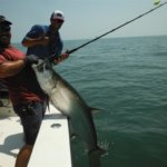 Coastal Georgia Fishing Charters Information