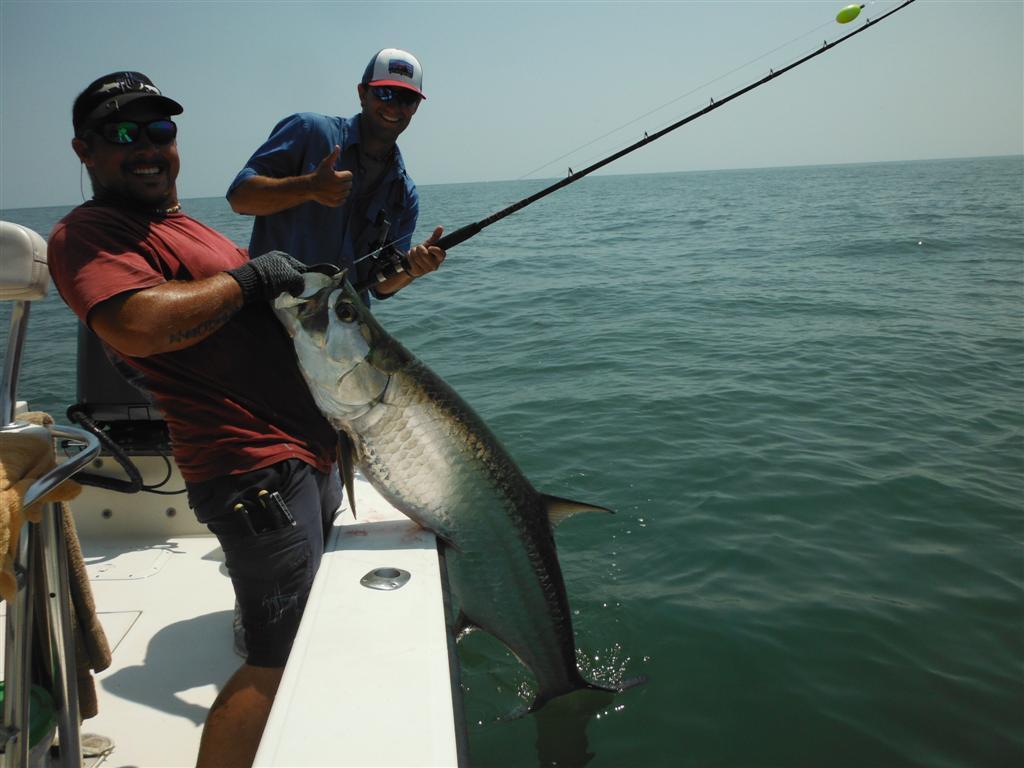 Coastal georgia fishing charter information georgia for Fishing trips in georgia