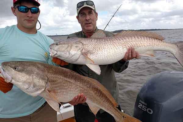 Coastal Georgia Bull Redfish